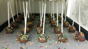 Bakery creations. Chocolate cake pops made from cake layers Royalty Free Stock Photo