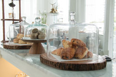 Bakery displayed in glass bell. Display in bakery shop Royalty Free Stock Photo