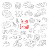 Bakery fresh bread collection doodle style vector illustration. Stock Images