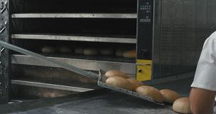 Bakery industry baking bread taking off from the oven of the baker chef his assistance arrange the bread on the special. Shelves stock video footage