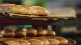 Bakery. Mechanized Bakery. Production of bread. Production of bread. Laying bread on the tray stock video footage