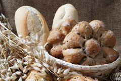 Bakery products. Still-life with bakery products and corn royalty free stock photo