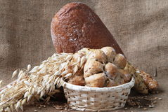 Bakery products Stock Images