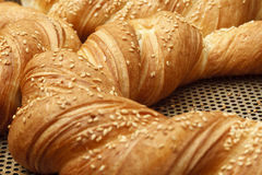 Bakery products in bakery shop Royalty Free Stock Photography