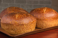 Bakery products. Golden brown cakes, and all Russian belyashi ru Royalty Free Stock Images