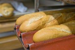 Bakery rack Stock Image