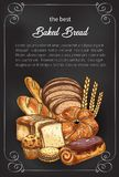 Vector bread sketch poster for bakery shop. Bakery shop sketch poster of baked bread and sweet buns. Vector design template of baker store wheat loaf and rye vector illustration