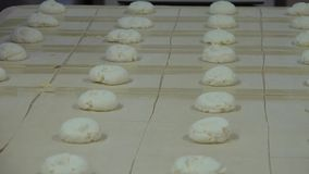 Bakery and Sweet Bun. A bakery also baker`s shop or bake shop is an establishment that produces and sells flour-based food baked in an oven such as bread stock video