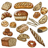 Bakery vector illustration. Hand drawn sketch, colored Royalty Free Stock Photo