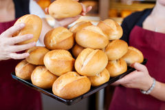 Bakery Worker Stacking Bread Rolls In Tray Royalty Free Stock Photography