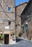 Bakgata. Capranica. Lazio. Italien. royaltyfri bild