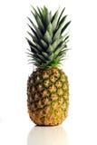 bakgrund över ananaswhite Fotografering för Bildbyråer