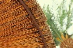 Bakgrund av bambustrandparaplyet Tropiskt feriebegrepp Royaltyfria Foton