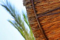 Bakgrund av bambustrandparaplyet Tropiskt feriebegrepp Fotografering för Bildbyråer
