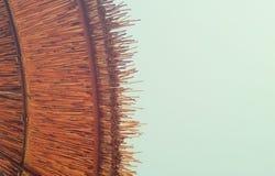 Bakgrund av bambustrandparaplyet Tropiskt feriebegrepp Arkivbild