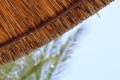 Bakgrund av bambustrandparaplyet Tropiskt feriebegrepp Royaltyfri Bild