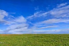 Bakgrund av blå himmel, molnet och ängen Arkivfoton