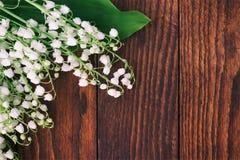 Bakgrund av bruna träbräden med skogen blommar liljekonvaljer Arkivbilder