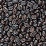 Bakgrund av coffebönor Arkivbild
