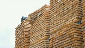 Bakgrund av de fyrkantiga sluten av trästängerna Wood timmerkonstruktionsmaterial för bakgrund och textur close upp Royaltyfria Bilder