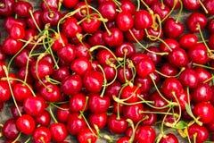 Bakgrund av de röda körsbärfrukterna Royaltyfri Fotografi