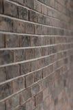 Bakgrund av den dekorativa tegelstenväggen Arkivbilder