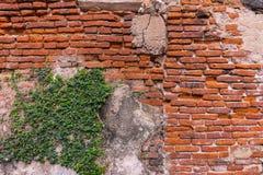 Bakgrund av den gamla tappningtegelstenväggen, tapetmodell Fotografering för Bildbyråer