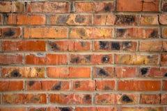 Bakgrund av den gamla väggen för röd tegelsten för tappning Fotografering för Bildbyråer