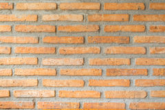 Bakgrund av den gammala tegelstenväggen royaltyfri bild