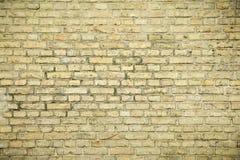 Bakgrund av den gammala tegelstenväggen royaltyfri fotografi