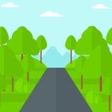 Bakgrund av den gröna skogen Arkivfoto