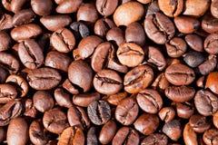 Bakgrund av den grillade makroen för kaffebönor Arkivfoto