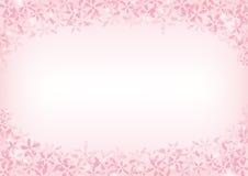 Bakgrund av den körsbärsröda blomningen Arkivfoton