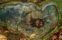 bakgrund av den naturliga stenen, begrepp av naturliga texturer i det löst, kopieringsutrymme, Arkivfoton