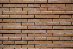Bakgrund av den nya tegelstenväggen Royaltyfria Foton