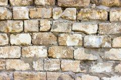 Bakgrund av den smutsiga tegelstenväggen för gammal tappning med skalningsmurbruk bakgrund eller texturerar Royaltyfri Fotografi