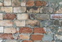 Bakgrund av den smutsiga tegelstenv?ggen f?r gammal tappning med skalningsmurbruk, textur royaltyfri bild