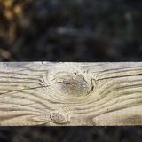 Bakgrund av det texturerade staketet av trä Arkivfoto