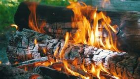 Bakgrund av en brand, en journal bränner arkivfilmer