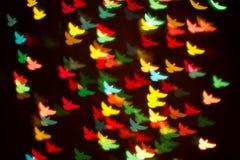 Bakgrund av färgrika fåglar Royaltyfria Bilder