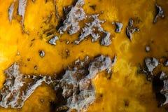 Bakgrund av gammal och gul bärnsten fotografering för bildbyråer