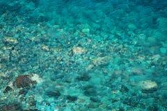 Bakgrund av genomskinligt vatten Royaltyfria Foton