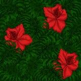 Bakgrund av gröna sidor av monsteraen och röda azaleablommor royaltyfri illustrationer