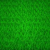 Bakgrund av grönt gräs Arkivfoton