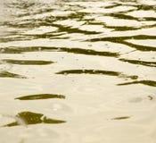 Bakgrund av gul yttersida av vattnet Arkivbild