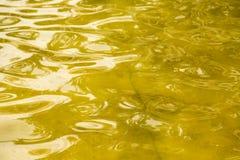 Bakgrund av gul yttersida av vattnet Arkivbilder