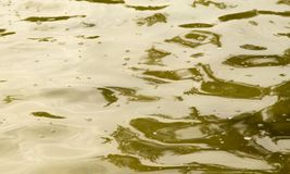 Bakgrund av gul yttersida av vattnet Royaltyfri Foto