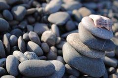 Bakgrund av havsstenar på stranden Royaltyfri Foto