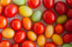 Bakgrund av körsbärsröda ljusa färgrika tomater Fotografering för Bildbyråer