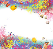 Bakgrund av korall vektor illustrationer